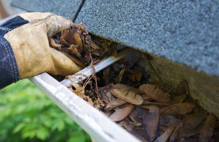 Call now for a free, no-obligation estimate for gutter and downspout cleaning in Branson, MO.